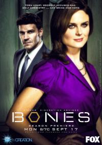 Bones Season 8 (2012)