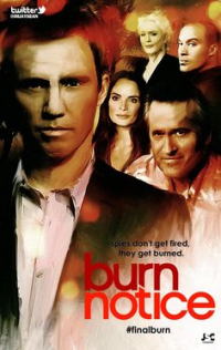 Burn Notice Season 1 (2007)