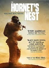 The Hornet&#39s Nest (2014)