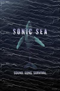 Sonic Sea (2016)