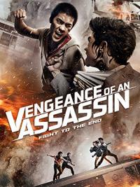 Vengeance of an Assassin (2014)