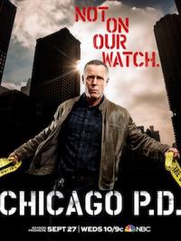 Chicago P.D. Season 5 (2017)