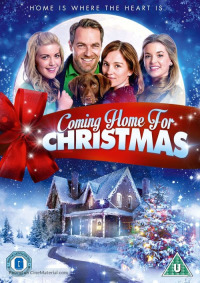 Coming Home for Christmas (2013)